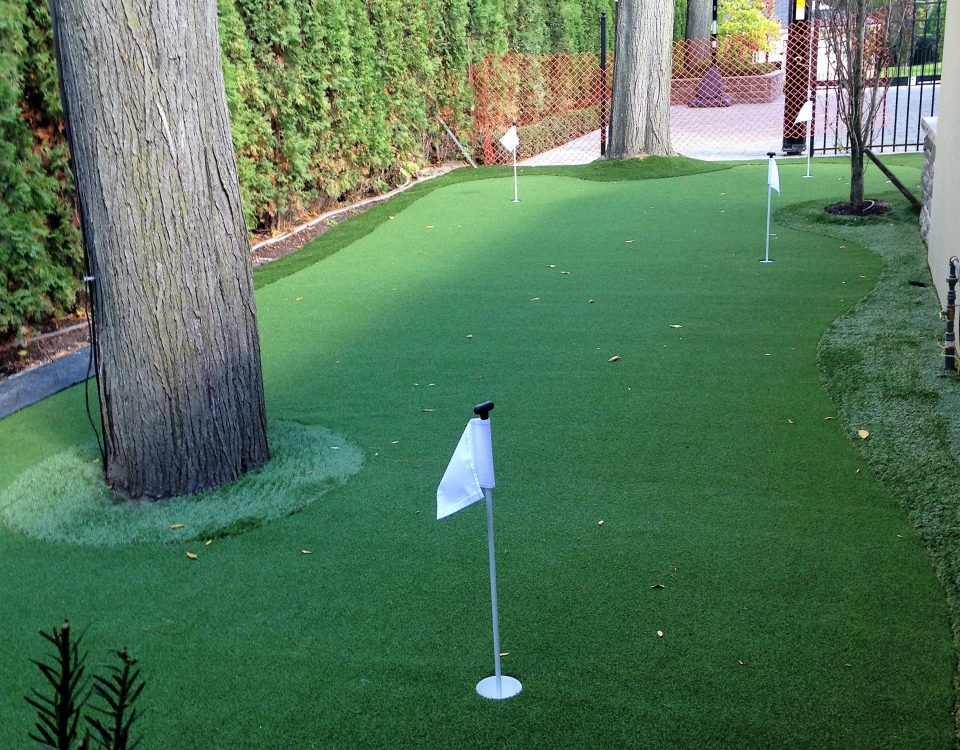 Another side yard two hole golf green