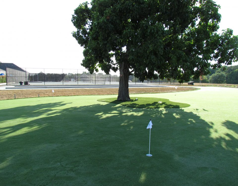 3,000 sq ft golf green for cottage resort