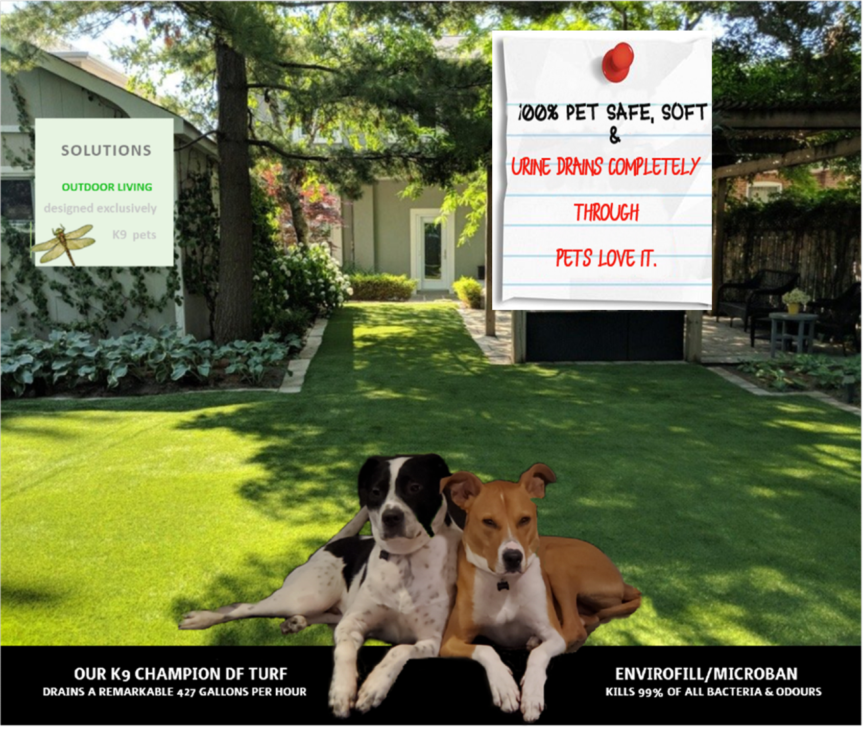 Champion DF Pet Turf For Dogs in Canada